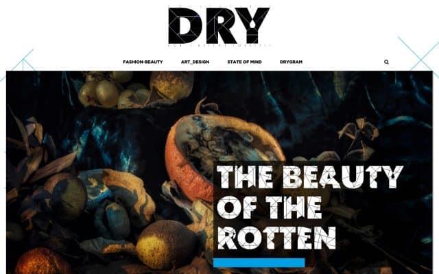 creazione sito blog magazine DRY