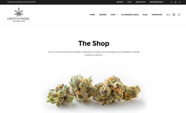 creazione sito e-commerce wordpress